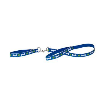BLUE LEASH AND COLLAR